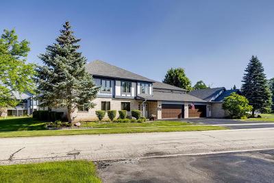 Joliet Condo/Townhouse For Sale: 2530 Harbor Drive #2530