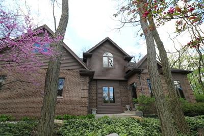 New Lenox Single Family Home For Sale: 226 Locust Lane