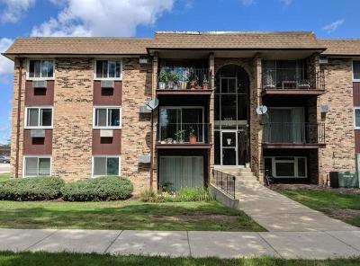 Hoffman Estates Condo/Townhouse For Sale: 1045 Higgins Quarters Drive #4-101