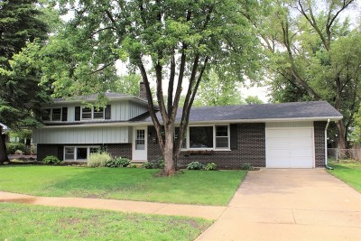 Naperville Rental For Rent: 325 Tupelo Drive