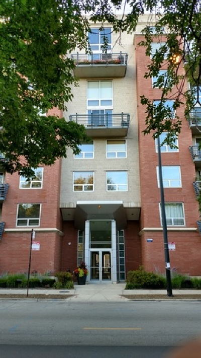 Condo/Townhouse New: 1100 West Montrose Avenue #203