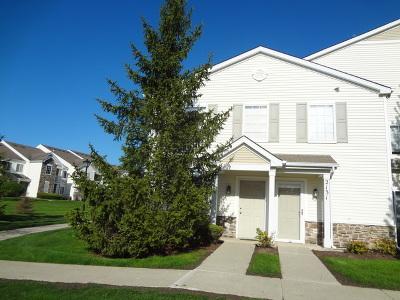 Carpentersville Condo/Townhouse New: 2115 Silverstone Drive #2115