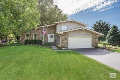 Naperville Single Family Home New: 5s564 Gordon Terrace