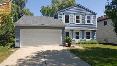 Vernon Hills Single Family Home For Sale: 37 Monterey Drive