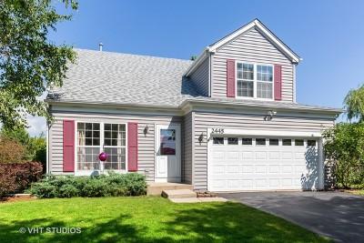 Carpentersville Single Family Home New: 2445 Meadowsedge Lane