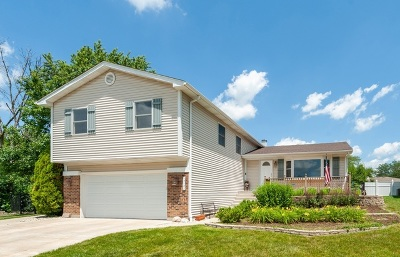 Hoffman Estates Single Family Home For Sale: 4127 Victoria Drive