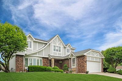 Schaumburg Single Family Home For Sale: 600 Juli Court