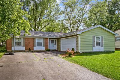 Bolingbrook Single Family Home For Sale: 225 Lafayette Drive