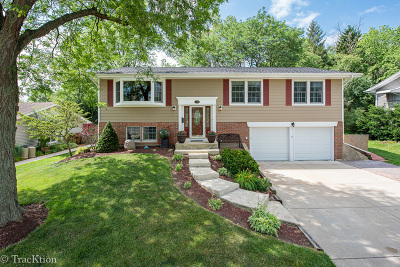 Glen Ellyn Single Family Home For Sale: 21w725 Glen Valley Drive