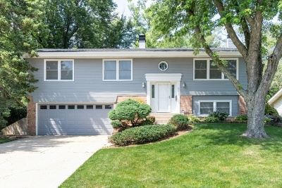 Glen Ellyn Single Family Home For Sale: 21w562 Buckingham Road