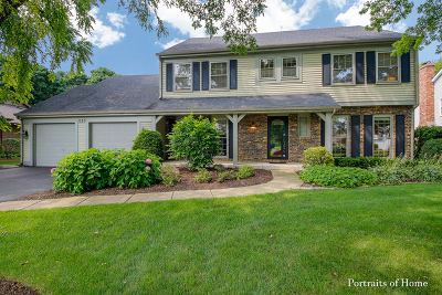 Du Page County Single Family Home New: 1123 Thunderbird Lane