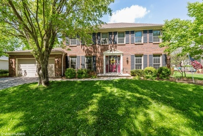 Naperville Single Family Home New: 623 Fredericksburg Court