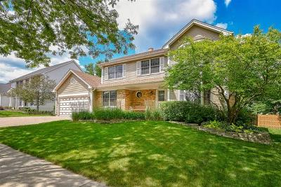 Carol Stream Single Family Home For Sale: 896 Chatham Drive