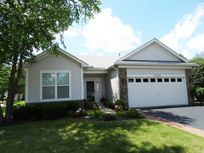 Romeoville Single Family Home For Sale: 1538 Benzie Circle