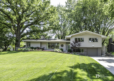 Naperville Single Family Home New: 923 Edgewater Drive