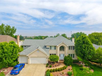 Orland Park Single Family Home Price Change: 11100 Saratoga Drive