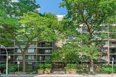 Chicago Condo/Townhouse New: 1555 North Sandburg Terrace #512K