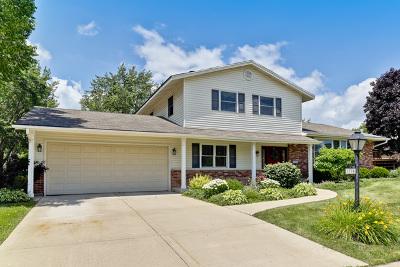 Hoffman Estates Single Family Home For Sale: 3790 Winston Drive