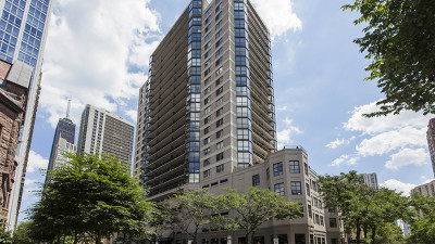 Chicago Condo/Townhouse New: 33 West Delaware Place #21B