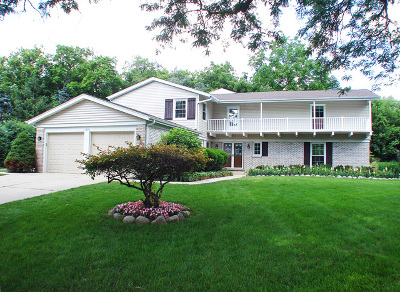 Libertyville Single Family Home For Sale: 1270 Saint James Place