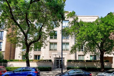 Chicago Condo/Townhouse New: 1422 North Lasalle Street #405