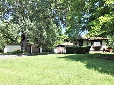 Lake Villa Single Family Home For Sale: 21744 West Gelden Road