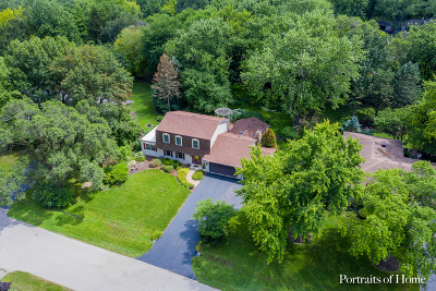 Naperville Single Family Home New: 28w495 Douglas Road