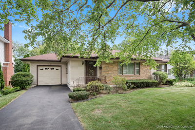 Glen Ellyn Single Family Home New: 345 Spring Avenue
