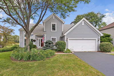 Wauconda Single Family Home For Sale: 538 Meadowview Drive