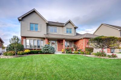 Orland Park Single Family Home For Sale: 11732 Blackburn Drive