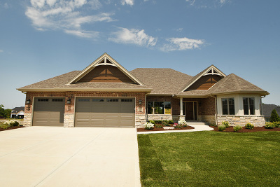 Mokena Single Family Home For Sale: 11930 Heinecke Drive