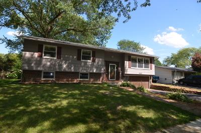 Hanover Park Single Family Home For Sale: 6867 Longmeadow Lane