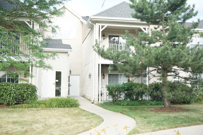 Carol Stream Condo/Townhouse For Sale: 786 North Gary Avenue #209