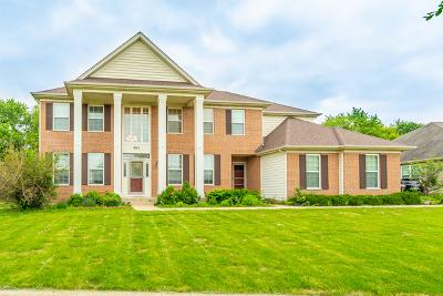 Elgin Single Family Home For Sale: 863 Oak Ridge Boulevard