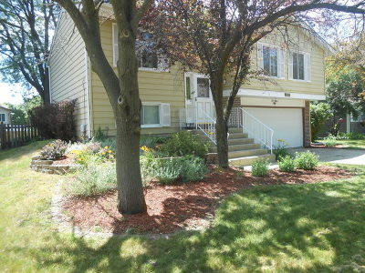 Warrenville Single Family Home For Sale: 30w081 Elmwood Court