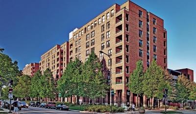 Evanston Rental New: 1715 Chicago Avenue #817N
