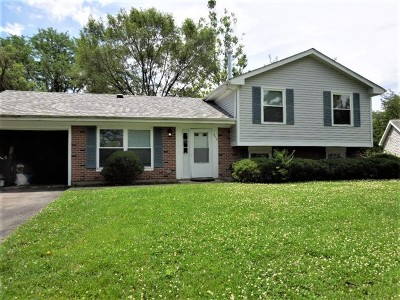 Bolingbrook Single Family Home New: 323 Dean Circle