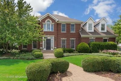 Geneva IL Single Family Home New: $539,900
