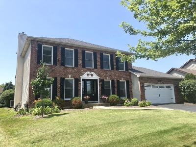 Naperville Single Family Home New: 5331 Coneflower Drive