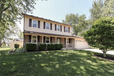 Hoffman Estates Single Family Home For Sale: 4099 Whispering Trails Drive