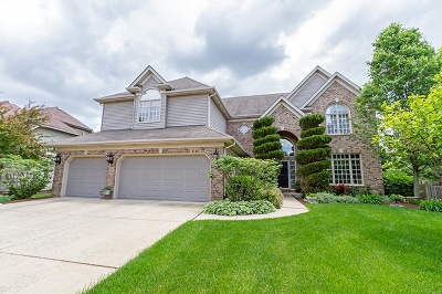 South Elgin Single Family Home For Sale: 521 West Thornwood Drive
