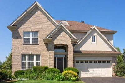 Vernon Hills Single Family Home For Sale: 158 Colonial Drive