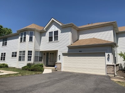 Hoffman Estates Condo/Townhouse For Sale: 990 Sweetflower Drive