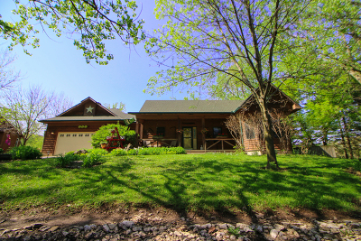 Ogle County Single Family Home For Sale: 404 Birch Lane