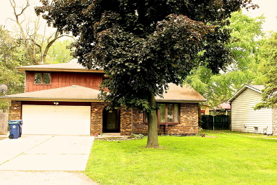 Hickory Hills Single Family Home For Sale: 9612 South 78th Court