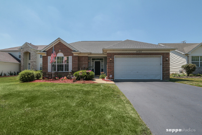 Plainfield Single Family Home New: 24323 Apple Tree Lane
