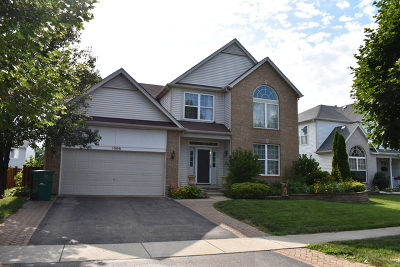 Romeoville Single Family Home New: 1666 Aster Drive