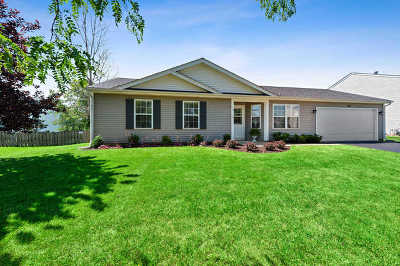 Island Lake Single Family Home New: 419 Windsor Lane