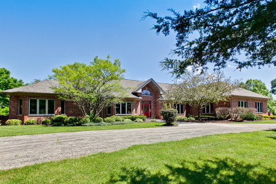 Mc Henry County Single Family Home For Sale: 11302 Siedschlag Road