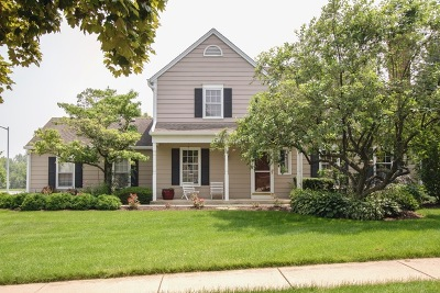 St. Charles Condo/Townhouse For Sale: 263 Sedgewick Circle